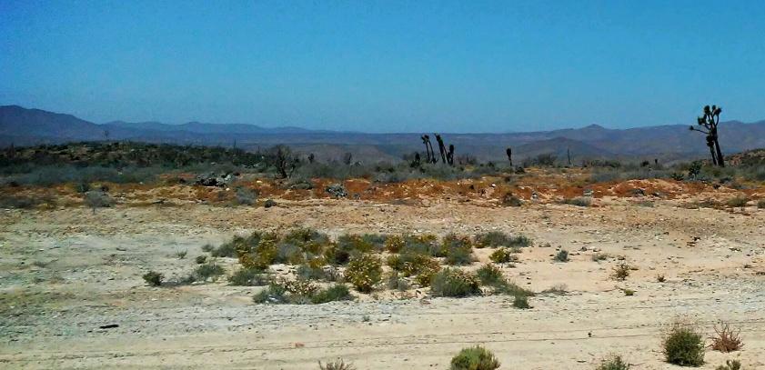 Border to La Paz #5