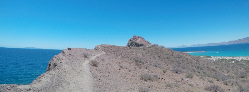 The ridge line trail leading to the rocky summit.